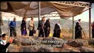 La Fiancée syrienne (2004)