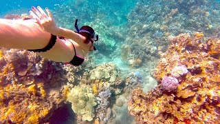 GoPro: Amazing Hawaii Honeymoon in Maui