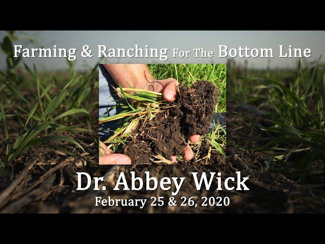 Dr  Abbey Wick BSC Feb 2020