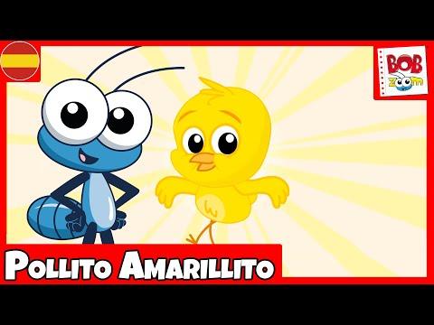 Pollito Amarillito - Bob Zoom - Vídeo Musical de Niños - Español
