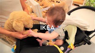 IKEAで買ったルイの可愛いペット♡ thumbnail