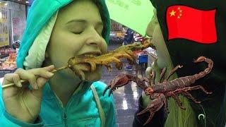 Scorpions, Squids and Weddings | China 2016