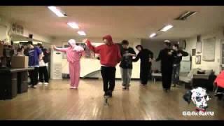 Dalmatian - The Man Opposed Remix Dance Practise