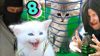 Предсказательница против. Спасение котенка новая серия от Кота Макса.
