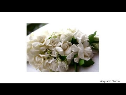 Wedding Flower Etiquette Boutonniere Corsage Wedding Flowers