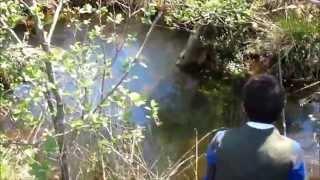 Surprise en pêchant la truite - Les Dupont Des Landes