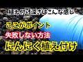 ナスとピーマン鶏糞追肥の楽なやり方【有機栽培】 - YouTube