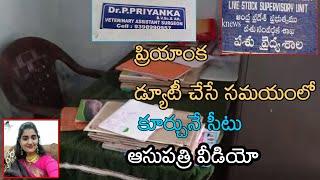 Doctor Priyanka Reddy Veterinary Hospital Inside Video   Priayanka Hospital Video Exclusive  T2KNEWS