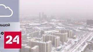 Москва откапывается из-под снега: выпало 125% месячной нормы осадков - Россия 24