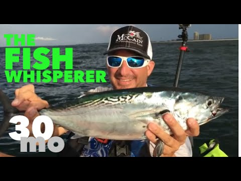Catching bonita offshore w the fish whisperer navarre for The fish whisperer