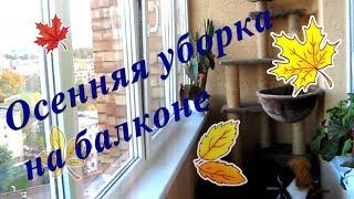 Осенняя уборка/Убираем балкон/Моем окна/Victoria BY