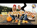 How to make a Pumpkin Piano! (using a Makey Makey!)   Maddie Moate