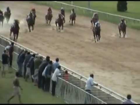 ม้าแข่งสนามเชียงใหม่ 25 พค. 56 เที่ยว 5
