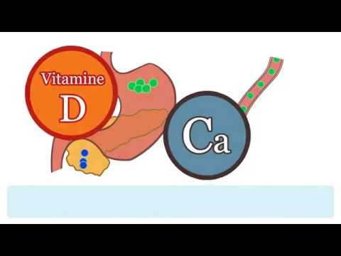 Effect of Vitamin D and Calcium intake on type 2 diabetes