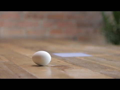 Easy Recipe For Warm Egg Near Blue Square You Can Make In Just 4 Months!