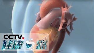 《健康之路》 20190919 心脏历险记(下)| CCTV科教