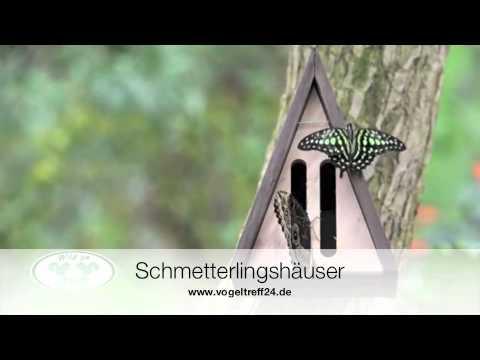 schmetterlinghaus insektenhotel f r schmetterlinge. Black Bedroom Furniture Sets. Home Design Ideas