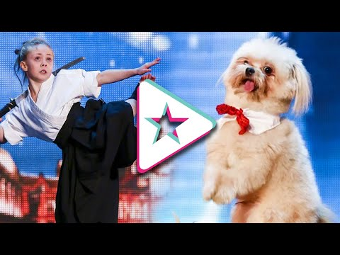 Surprise WILDCARD Auditions From Britain's Got Talent!