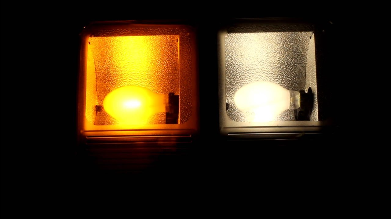 High Pressure Sodium Lights Vs Metal Halide Iron Blog