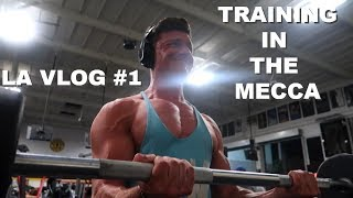BACK WORKOUT IN THE MECCA | MEETING CALUM VON MOGER |