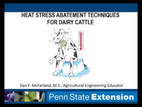 Dan McFarland: Heat Stress Abatement Techniques for Dairy Cattle