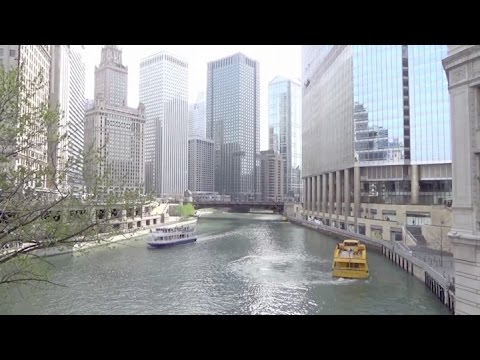 Chicago City Trip - Major Sights and More