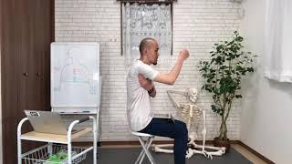 横隔膜と骨盤底筋の基礎(部分カット)