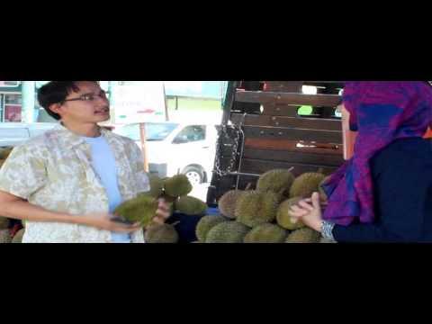 Cairns Group- Positive Impact (Pro)
