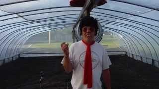 Bubbas Secret Garden # 4 How to grow Giant Pumpkins