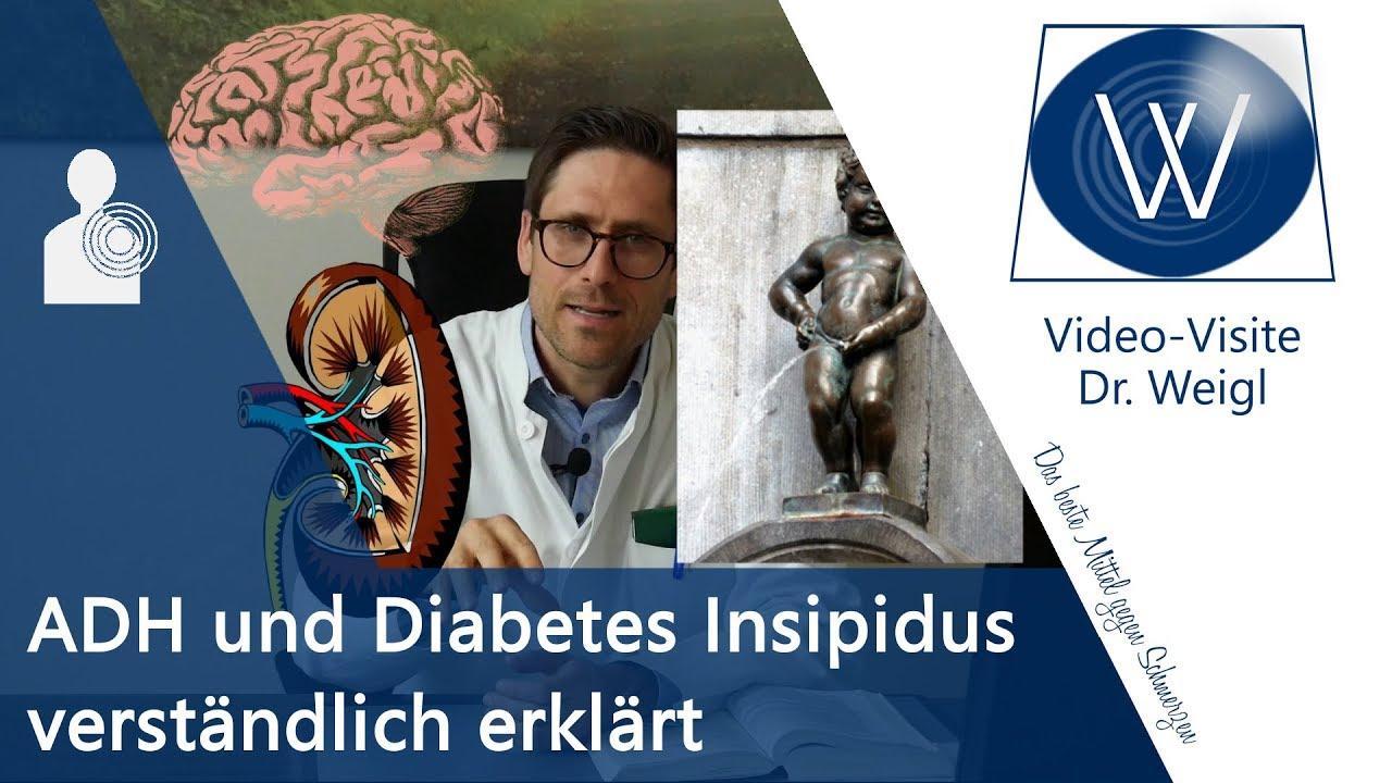 nierenschaden durch diabetes insípida