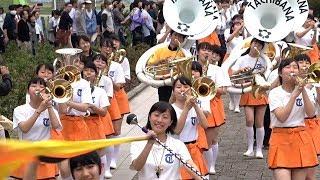 京都橘高校吹奏楽部 ブルーメンパレード2019(滋賀県) Kyoto Tachibana SHS Band thumbnail