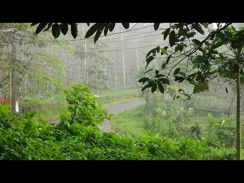 HEAVEN ON EARTH,RAIN IN KERALA ,KANJIRAPALLY