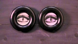80084 Set of 2 Switching Eye Lenticular Frames Thumbnail