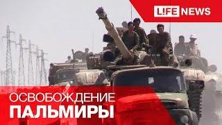 Война в Сирии: армия близка к освобождению Пальмиры от ИГИЛ