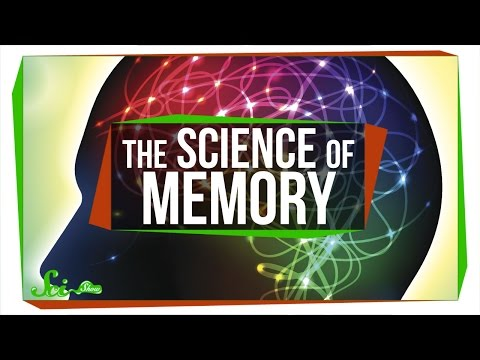 5 Videos on the Science of Memory