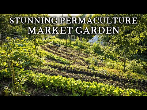 Amazing No Dig Market Garden Using Terraced Beds | Growing Vegetables, Flowers & Herbs for 50 Homes