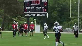 New York Jets Quarterbacks in OTA's