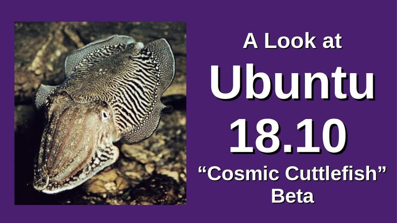 A Look At Ubuntu 1810 Cosmic Cuttlefish Beta,KHQH7 - Watch
