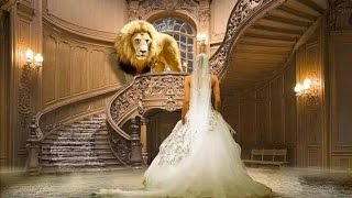 Die größte Liebesgeschichte aller Zeiten ➤ Die Braut des Königs