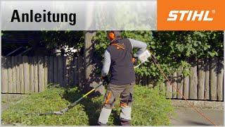 Schnitt-Technik Elektro-Heckenschneider: Bodendecker schneiden mit dem STIHL HLE 71