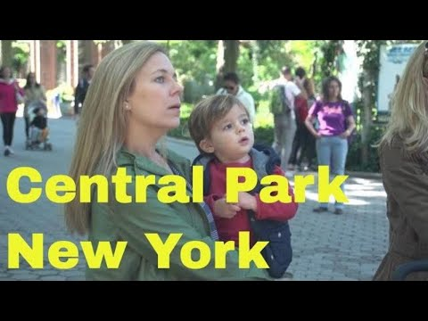 central-park,-manhattan,-new-york-city