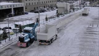 ガレージビーグル排雪2018-9 注目
