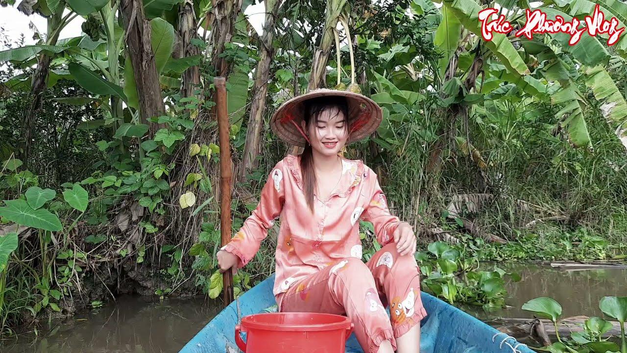 Thôn Nữ Bao Vây Sông Hậu Bẫy Cá Bằng Thứ Mồi Đặc Biệt   Trúc Phương Vlog