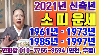 (2021년. 신축년. 소띠. 신년운세) 신축년에 울 소띠 여러분들 어찌 될까요?  인천. 부평. 연화암.0…