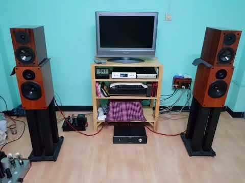Musical Paradise MP 303 + DSD Music Player+ลำโพง MP S 1 MK2 Ch man1
