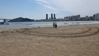 부산광역시 수영구 광안리해수욕장 모습9