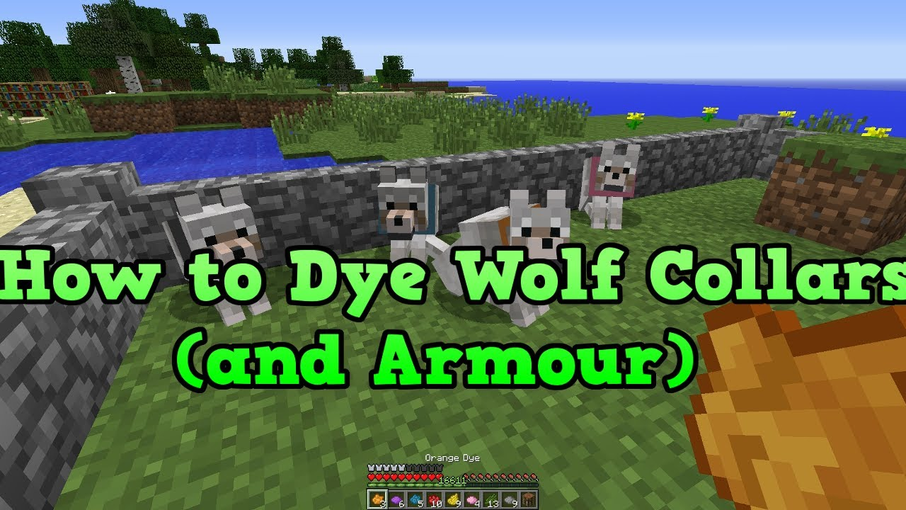 Minecraft Xbox 360  PS3 How to dye wolfs wolf collars