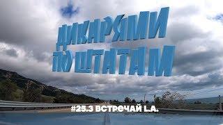 LOS ANGELES, ЮЖНЫЙ ЦЕНТРАЛ, МОТЕЛЬ | ДИКАРЯМИ ПО ШТАТАМ #25.3 [4K]