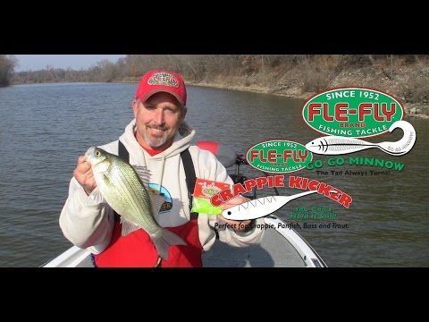 White Bass fishing Grand Lake Tributaries