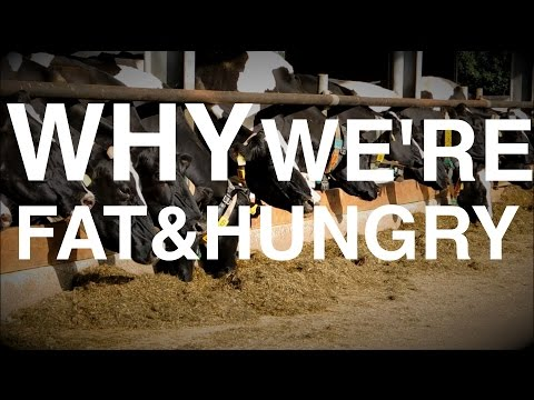 Why we get Fat AND Hungry   (Biology of Weight Gain & Low-Carb )